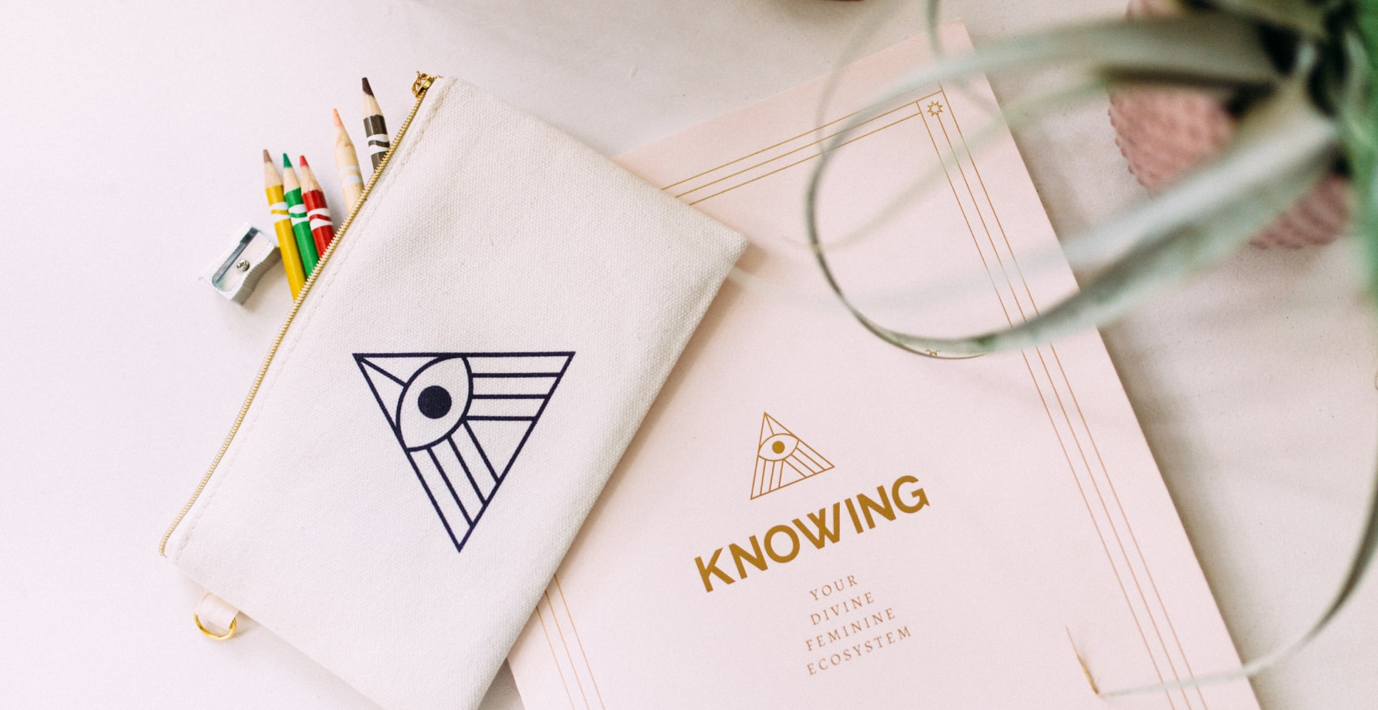 Knowing-casestudy2-5
